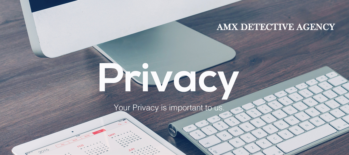 privacy policy for amx detective agency